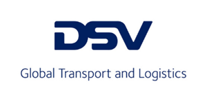 DSV - web (1)