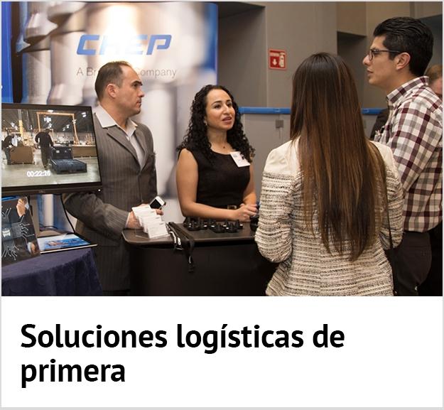 Leading Log solutions ES